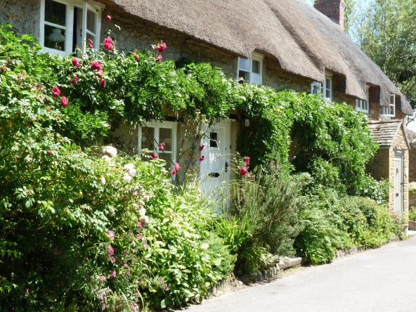 Thatched Cottages in East Coker