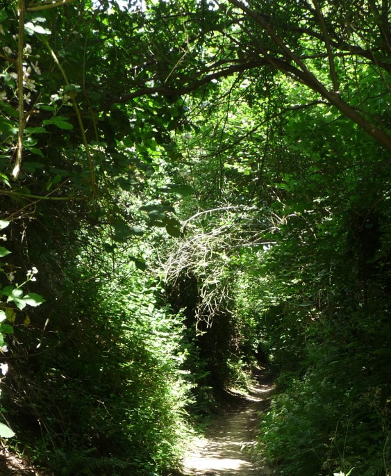 Public Footpath from Burton Lane to Nash Priory
