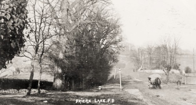 friern barnet lane 1900- horse (2)