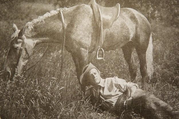 HERBERT and Horse