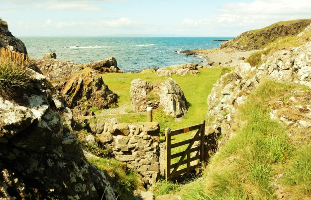 COASTAL PATH DUNURE.JPG