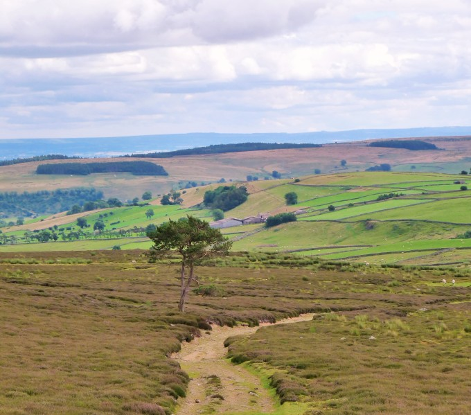 Walking Trail Yorkshire Dales.JPG